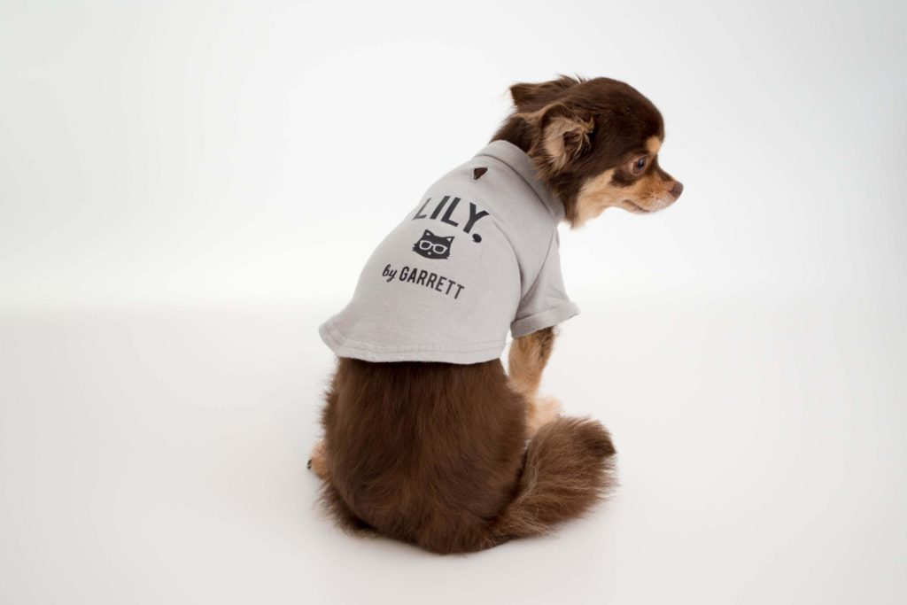 ギャレットモータース犬服