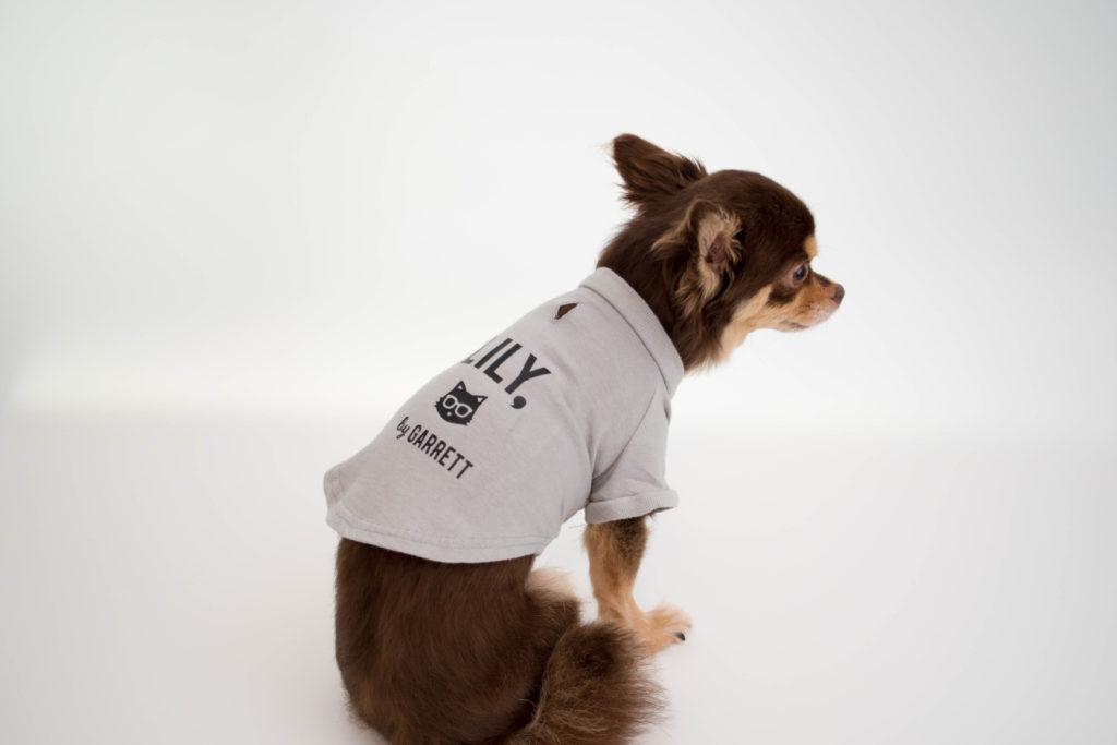 ギャレットモータース自作犬服